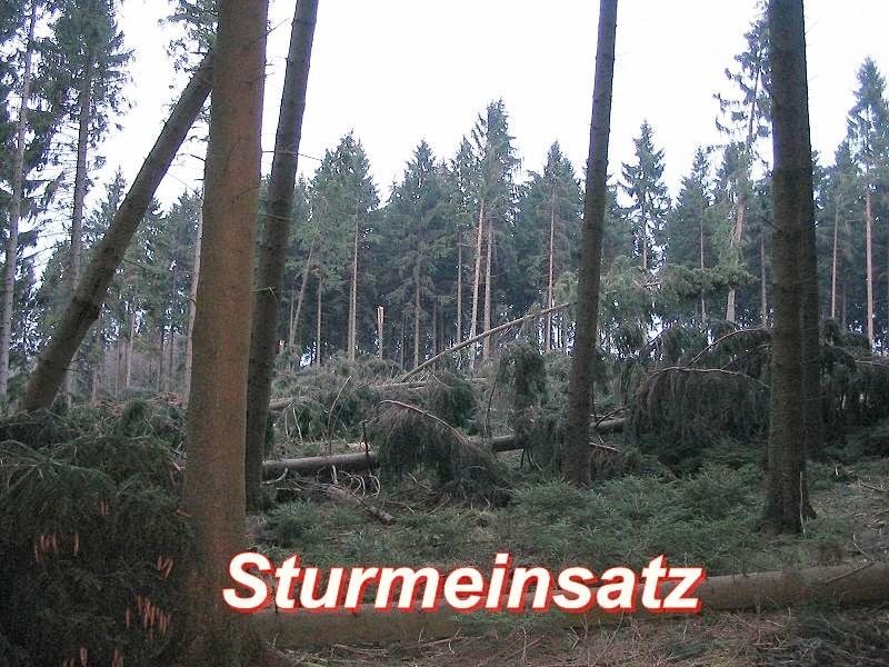Unwetter / Sturmschaden